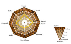 Briess Caramel Rye Average Sensory Profile spider web diagram.